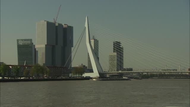 zoom in to erasmus bridge - cable stayed bridge stock videos & royalty-free footage