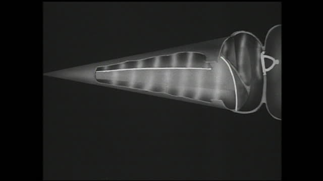 vidéos et rushes de zoom in view of various parts of the ear and arrow pointing at different parts - biology