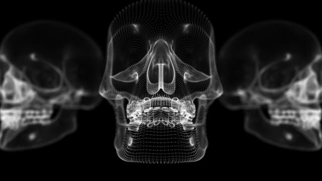 zoom into and through a human skull - tomb stock videos & royalty-free footage
