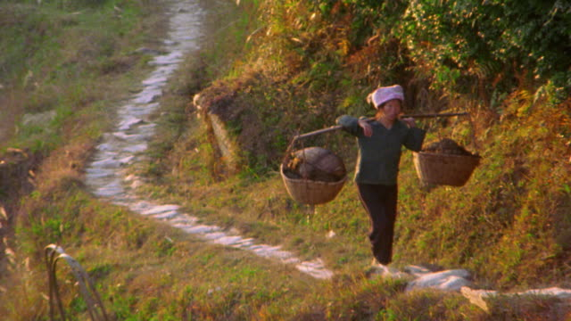 zoom out chinese woman walking with baskets on path on terraced farmland / yunnan province, china - korb stock-videos und b-roll-filmmaterial