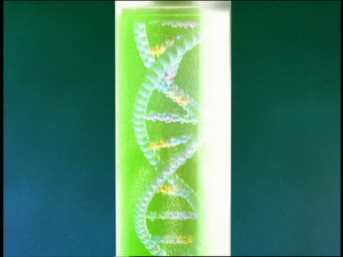 zoom out dna in test tube / pill capsules - genetic research stock videos & royalty-free footage