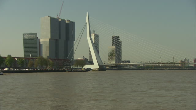 zoom out erasmus bridge on meuse in rotterdam - cable stayed bridge stock videos & royalty-free footage