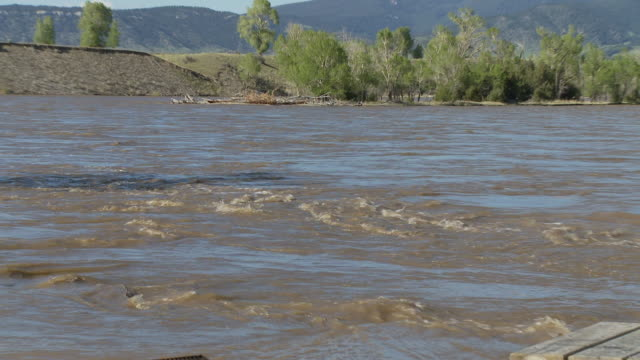 zoom out flooded park near river - riverbank stock videos & royalty-free footage