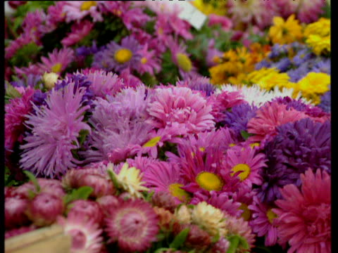 zoom out from flowers in buckets to shoppers in street - composizione di fiori video stock e b–roll