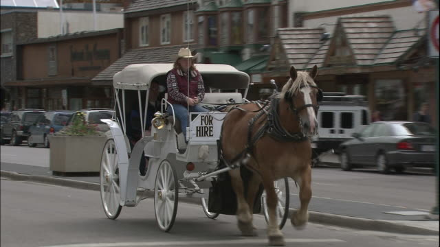 vidéos et rushes de zoom out from horse drawn carriage travelling along street in banff, canada - animaux au travail