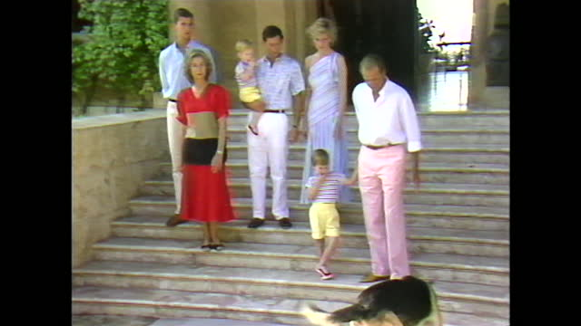 zoom out from prince charles holding prince harry next to princess diana to members of the uk and spanish royal families posing for a photcall... - mammal stock videos & royalty-free footage