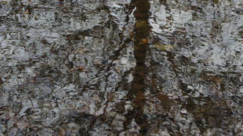 zoom out from the bottom of a stream - weathered stock videos & royalty-free footage