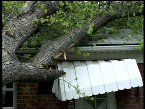 zoom out from tree collapsed onto roof of house following storm, queens, new york - zoom out点の映像素材/bロール