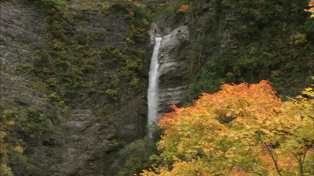 zoom out from waterfall cascading over rocks, maple tree with autumnal foliage in foreground - toyama prefecture stock videos and b-roll footage
