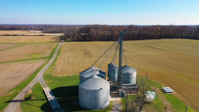 zoom out of grain silo 4k - soybean stock videos and b-roll footage
