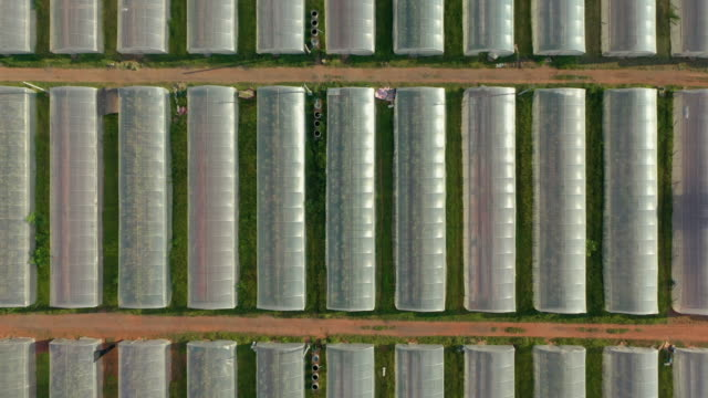 zoom out of greenhouse planting farm in rural - zoom out stock videos & royalty-free footage