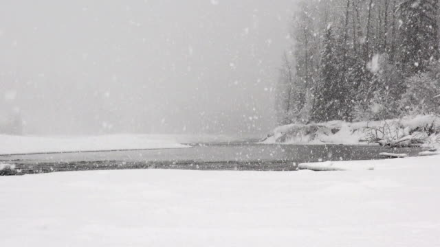 zoom out shot of river and snow covered trees along river bank in mountains during heavy puffy snowflake snow storm. - glacier national park us stock videos and b-roll footage