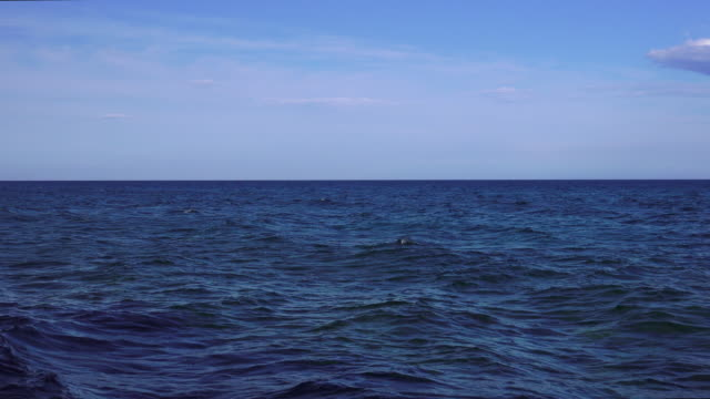 Zoom out shot of sea view and horizon over water