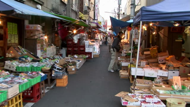 Zoom out stalls along narrow alley in Tsukiji fish market at dusk / Tokyo