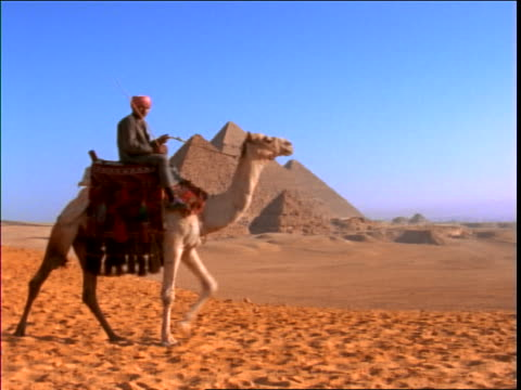 zoom out pan to man in turban riding camel with pyramids in background in desert / giza, egypt - herbivorous stock videos & royalty-free footage