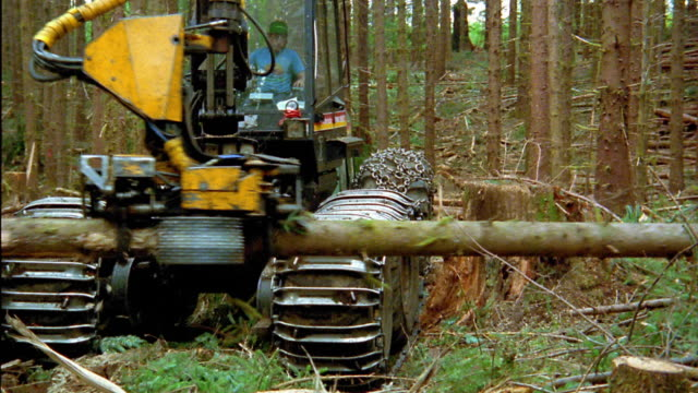 zoom out to wide shot man operating logging vehicle in forest / olympic peninsula, washington - industria forestale video stock e b–roll