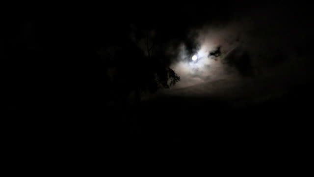 zoom out waxing moon with dark clouds moving - pine stock videos & royalty-free footage