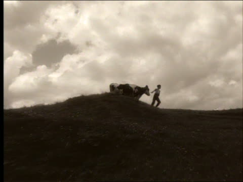 vidéos et rushes de sepia zoom out + zoom in boy in cap pulling reluctant cow on hilltop - herding