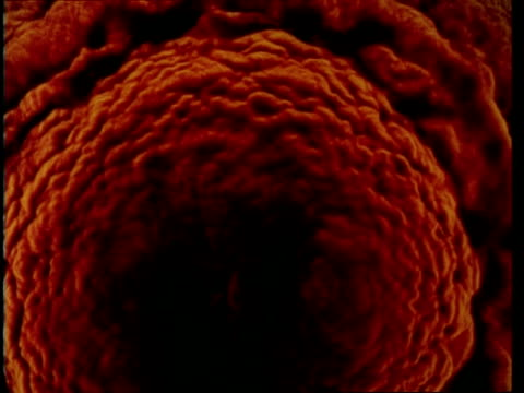 ms zooming in, red larval effect from above - ewigkeit stock-videos und b-roll-filmmaterial