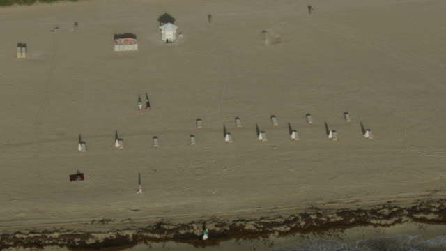 zooming out shot of beach chairs on south beach in miami - seaweed stock videos & royalty-free footage