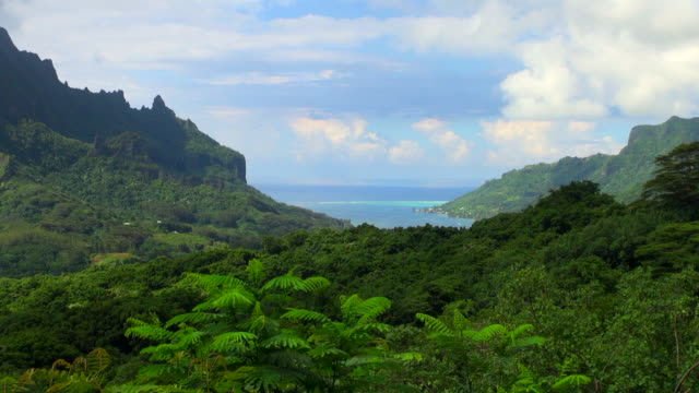 zooming-in shot from mountains to bay - insel moorea stock-videos und b-roll-filmmaterial