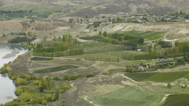 zooming-in shot of an orchard near kawarau river - irrigation equipment stock videos & royalty-free footage