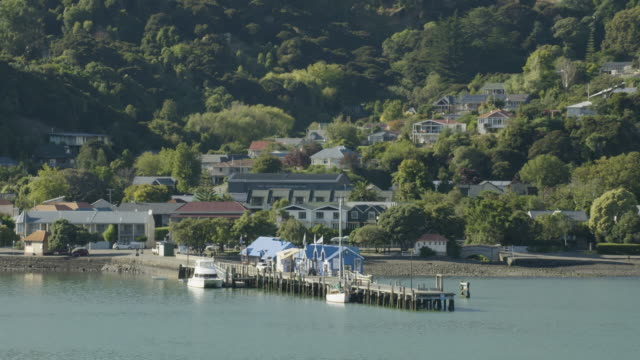 zooming-out shot of a pier in akaroa - akaroa stock videos & royalty-free footage