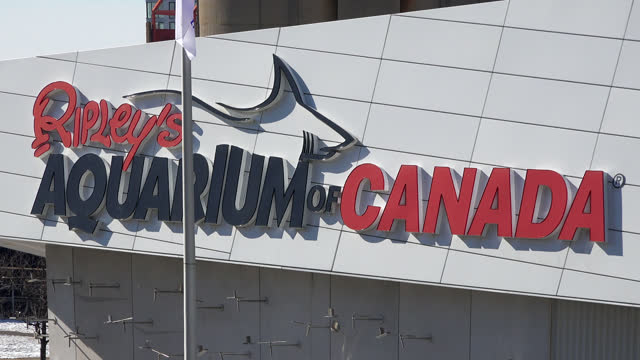 vidéos et rushes de zoom-out from the ripley's aquarium sign on july 19 in toronto, ontario, canada. the building is located at the base of the cn tower and it is a... - panneau d'entrée