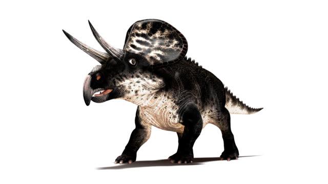 Zuniceratops dinosaur walking